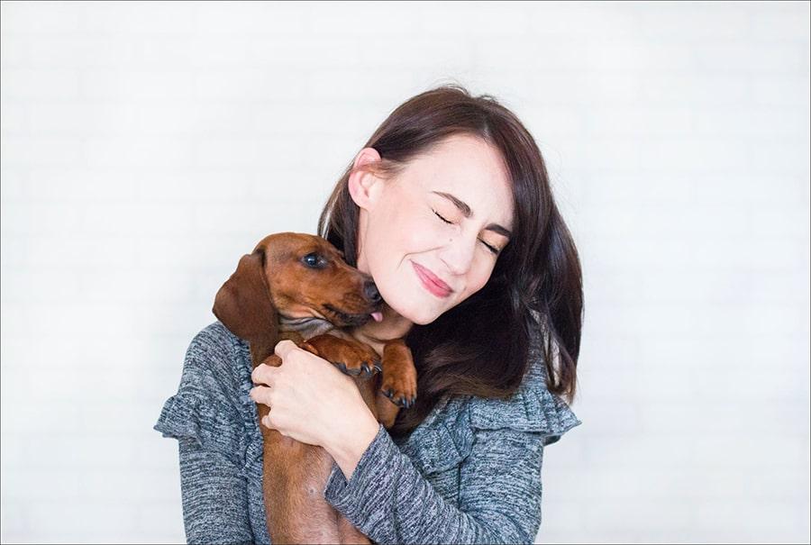 Mơ được tặng một chú chó