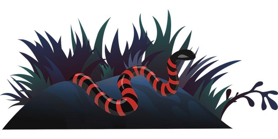 Mơ thấy con rắn đỏ đuổi theo