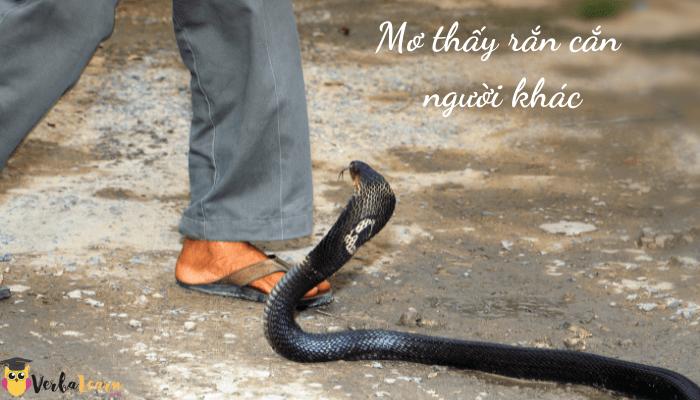 Điềm báo mơ thấy rắn cắn người khác